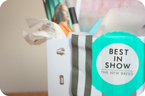 Harvey Nichols goodie bag | Ship-Shape and Bristol Fashion